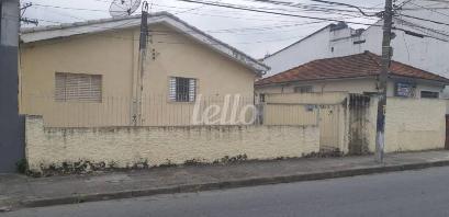 FRENTE CASA AREA - Área / Terreno