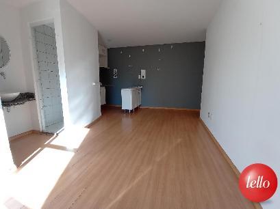 DORMITÓRIO / SALA / COZINHA - Apartamento 1 Dormitório