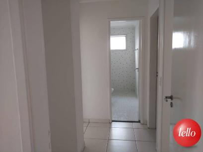 CORREDOR INTERNO - Apartamento 3 Dormitórios
