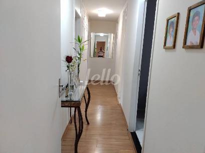 DISTRIBUIÇÃO - Apartamento 3 Dormitórios